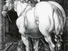 1941_70х49_Альбрехт Дюрер - Большая лошадь
