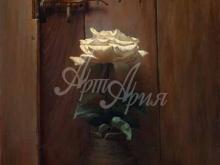 3417_65х49_А.Н.Антонов - Белая роза