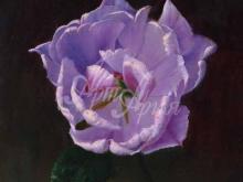 3437_70х56_А.Н.Антонов - Цветок