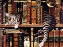 8056_50х40_Любитель книг