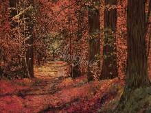 Л226_Гвидо Борелли - Осенний лес