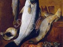 1280_42x60 Джованни Баттиста Руопполо. Натюрморт с копченой рыбой, австралийским окунем, морским окунем, морским карасем и ракушками