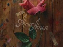 3408_60х45_А.Н.Антонов - Розовая роза