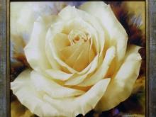 И.Левашов-Белая роза 55х42см 4300руб (репродукция на холсте, рама дерево)