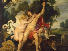 1252_40х35 Рубенс П.П. - Венера и Адонис