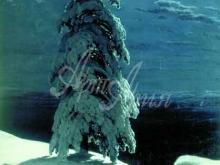 2402_И.И.Шишкин - На севере диком