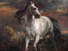 Ван Дейк Антонис.Лошадь Ахилла