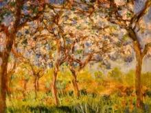 1144_50х50 Ван Гог - Цветущий сад