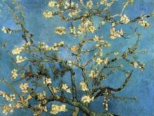 1701_60х48_В. Ван Гог - Ветки миндаля в цвету