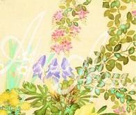 5006_20x62 Кицу - Цветы и травы 1