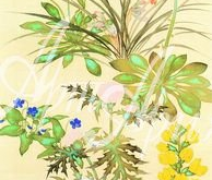 5008_20x62 Кицу - цветы и травы 2