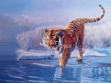 6002_60x40 Л.Пиерман - Тигр, входящий в воду