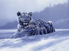 6004_60x40 С.Ходж - Сибирский тигр