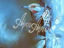 6011_40x25 Колибри в голубом