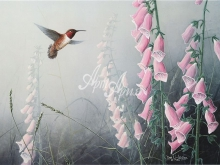 6013_54x40 Д.Ли-Легер - Колибри в розовом