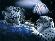 6038_53x40 Леопарды в космосе