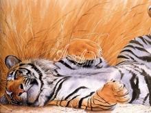 6044_53x40 Лежащий тигренок