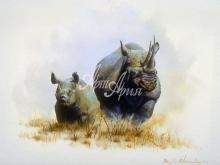 6050_59x40 Семейство носорогов