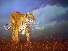 6053_60x40 Тигр на охоте