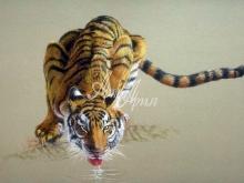 6069_60x40-tigr-pyushhij-vodu