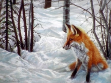 6078_50x40-lisica-zimoj