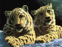 6099_40x30-kosmicheskie-tigryata