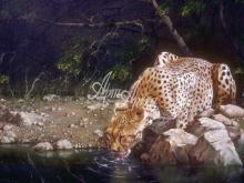 6129_61x40-leopard-pyushhij-vodu