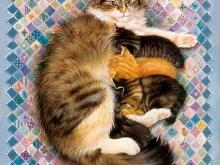 6147_Кошка с котятами_50х37