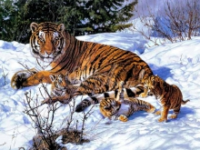6175_Отдых на снегу_100х67
